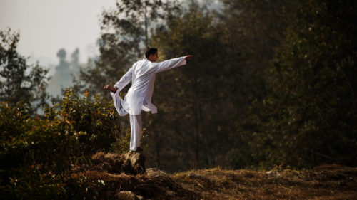 A man performing a yoga pose in a forest