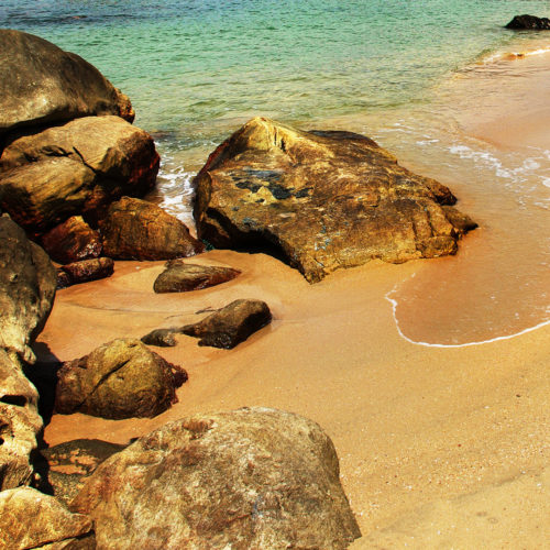 elsewhere beach cove