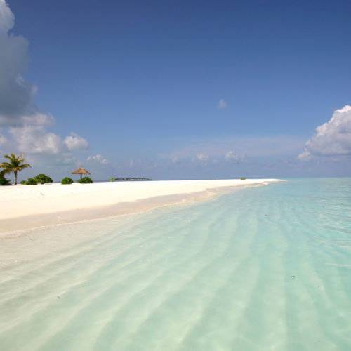 greaves_beyond_india_maldives_beach