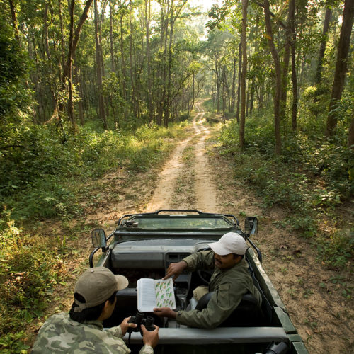 taj-banjaar-tola-safari