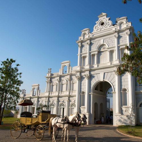 taj-falaknuma-palace-horses